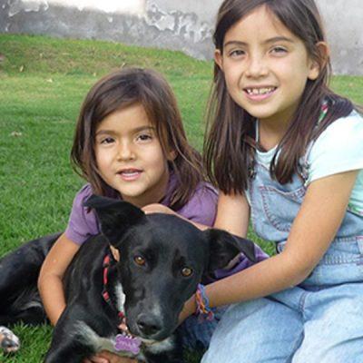 DOG AND COMPANION